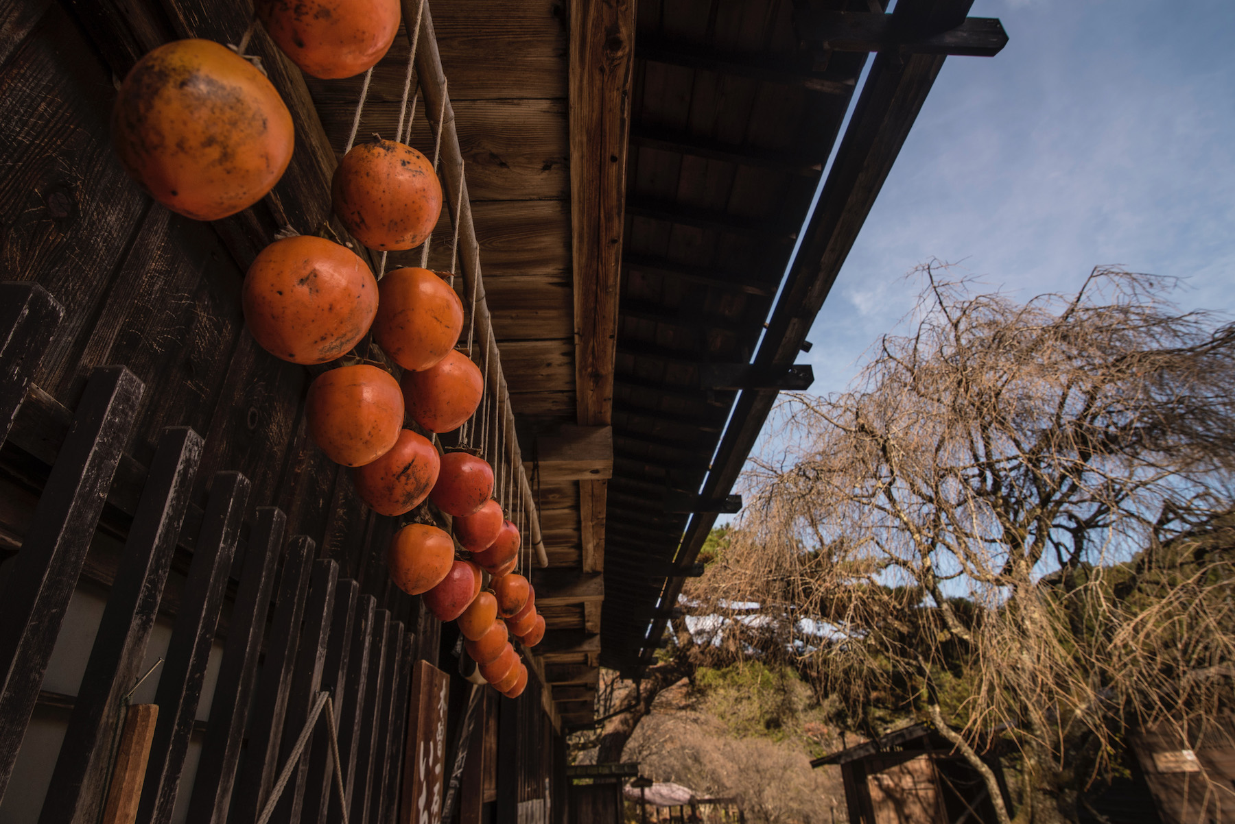 Japan's Nakasendo Way