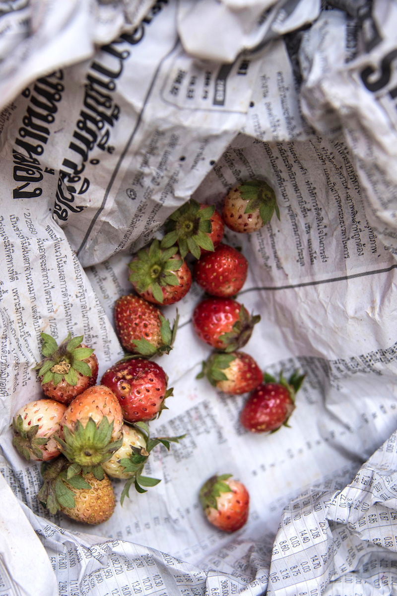 Chiang Mai Thailand strawberries