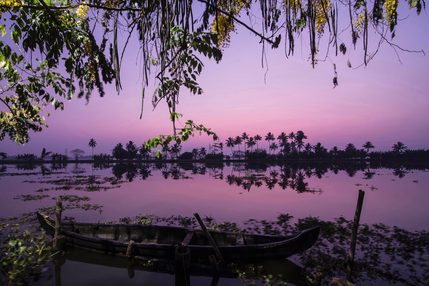 Sunrise in Kerala's backwaters