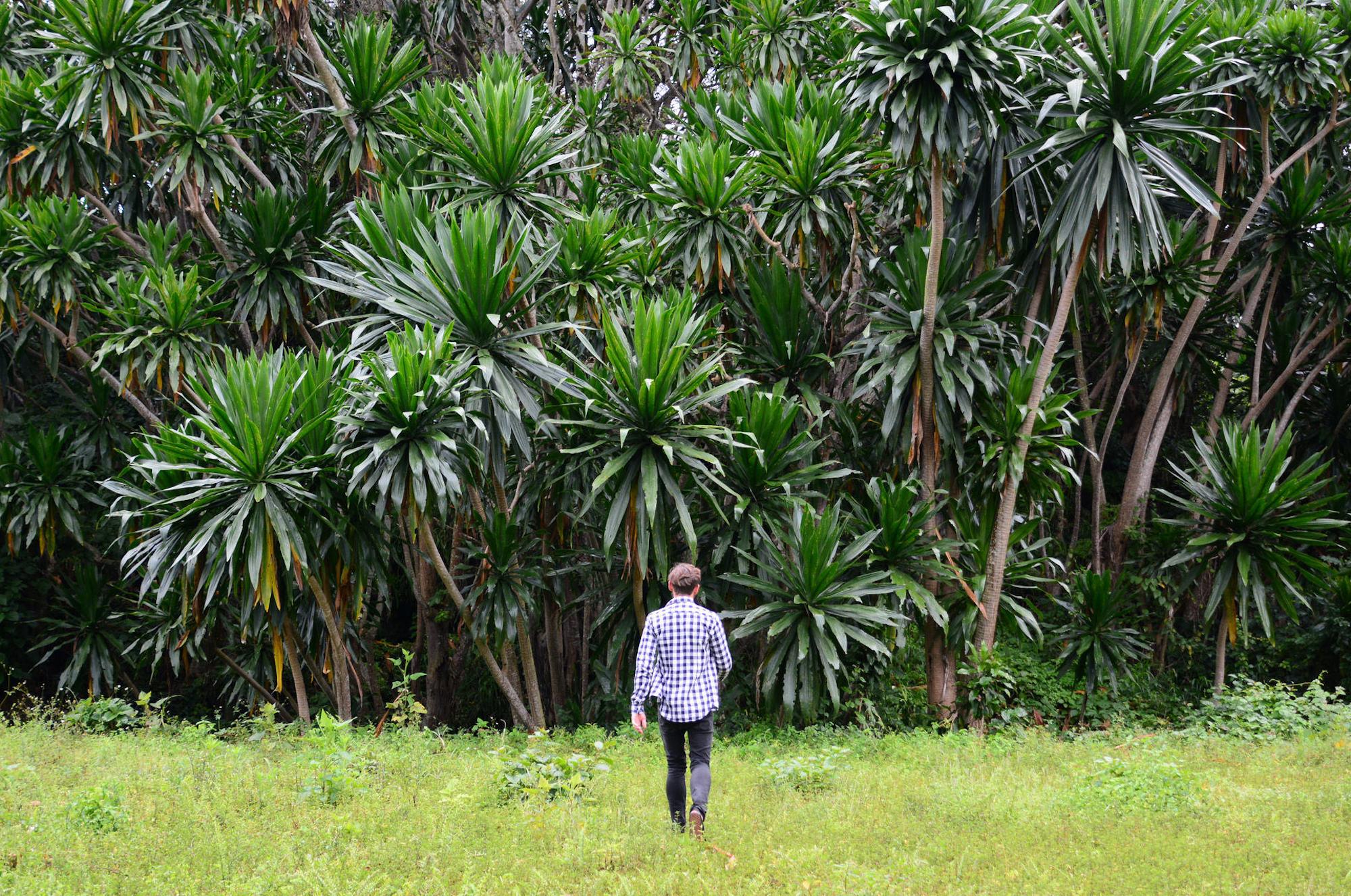 Musanze, Rwanda