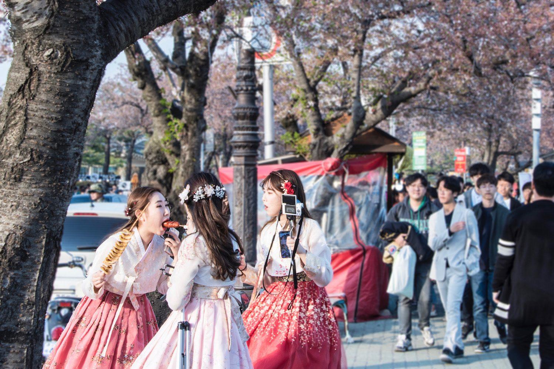 Is Korea the Poor Man's Japan?