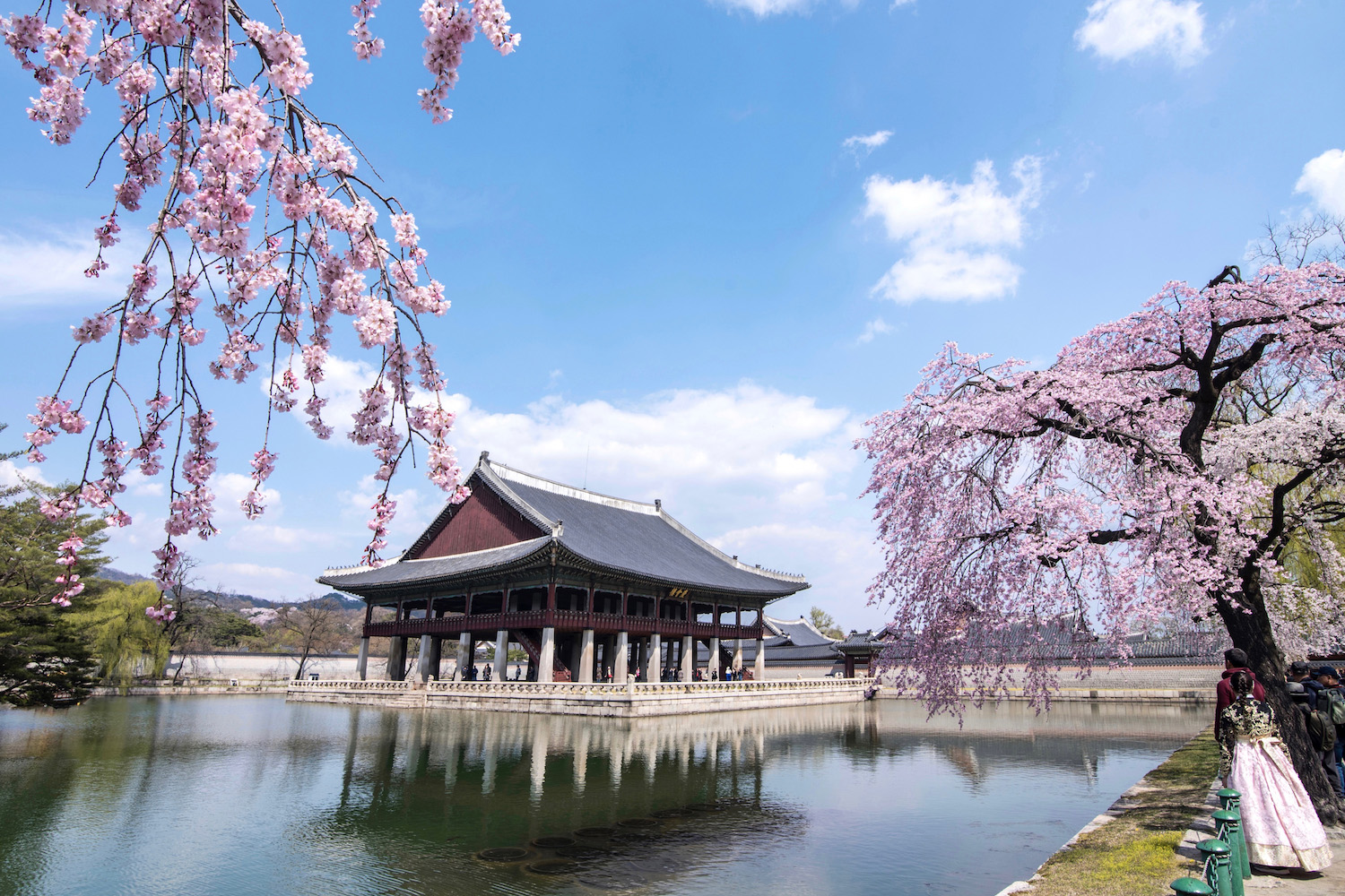 When Will Korea Open for Tourism?