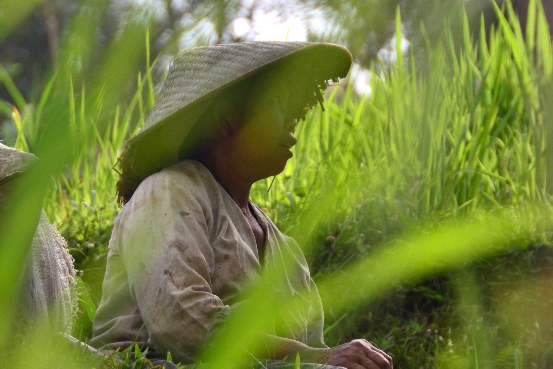 Does Julia Roberts' Bali Still Exist?