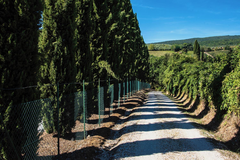 Tuscan Roads, Take Me Home
